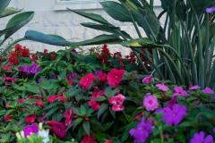 A Gentle Touch Funerals - Garden