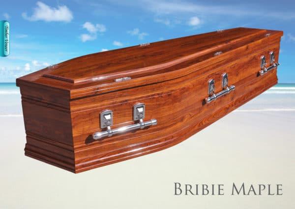 The Bribie