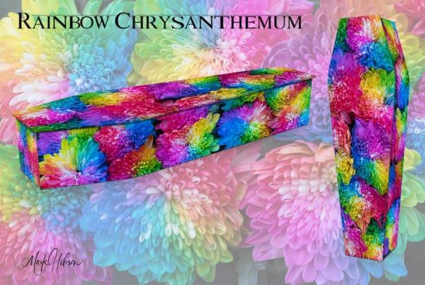 Rainbow Chrysanthemums Coffin