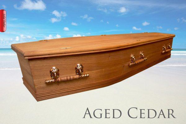 The Aged Cedar