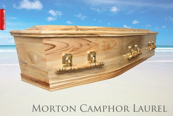 The Morten Camphor Laurel